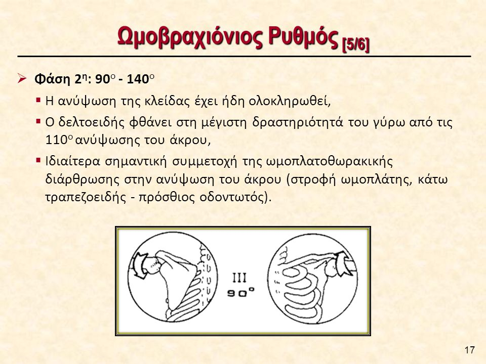 Ωμοβραχιόνιος Ρυθμός [6/6]
